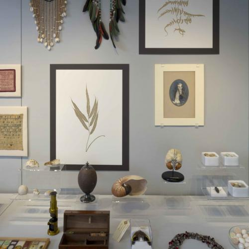 Collection of accumulated objects and artefacts