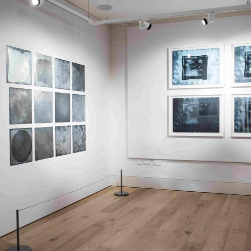 Imprinted Exhibtion: Photography by Cecelina