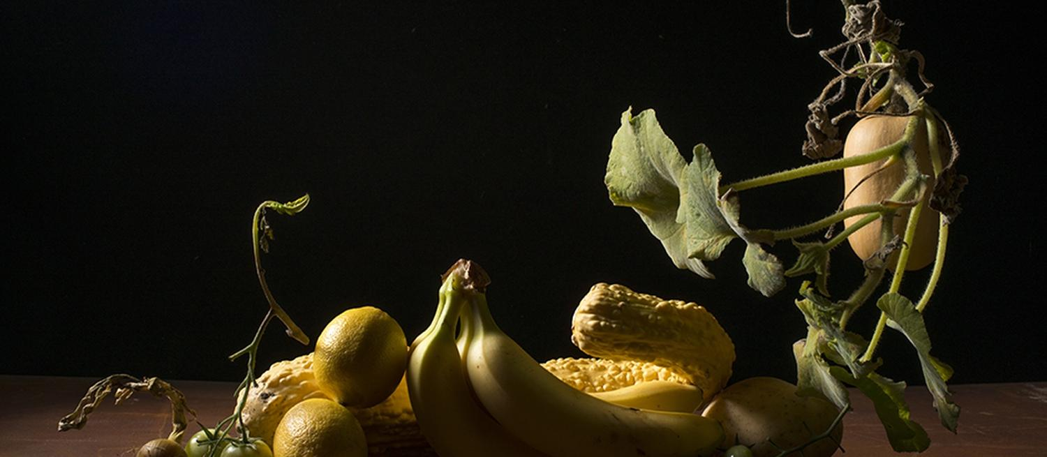 still life of fruit taken by Kasia Burke