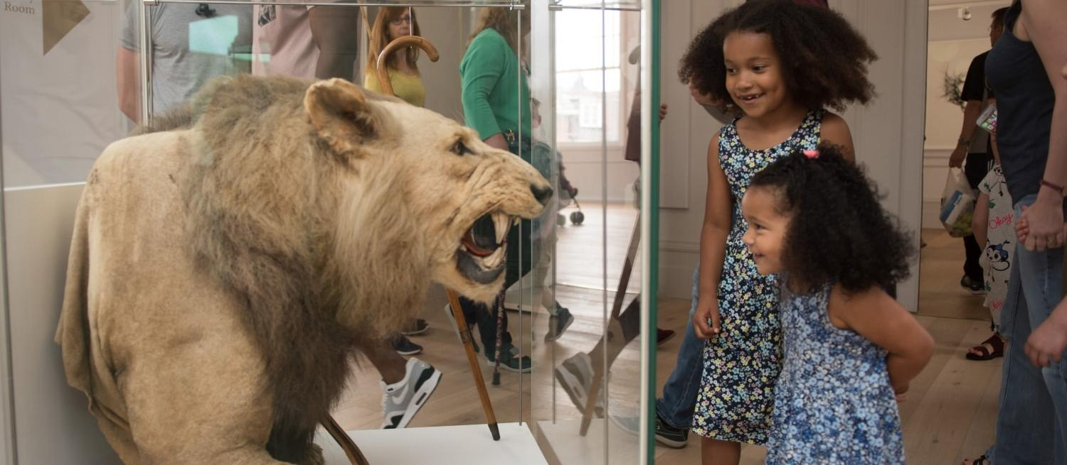 Family festival at St Albans Museum + Gallery