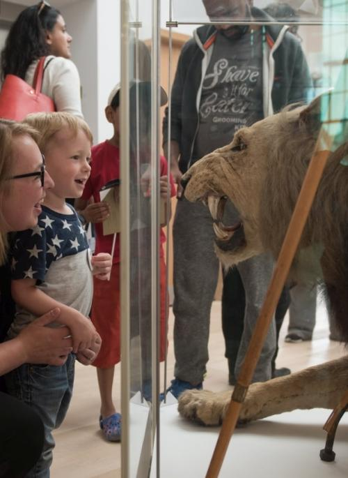 child and mum looking at a lion